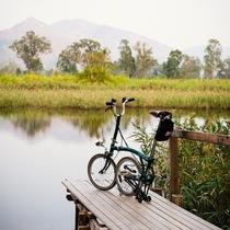 新界單車路線推介:元朗南生圍,在香港的後花園踩單車!