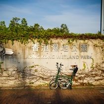 新界單車路線推介:元朗至天水圍,濕地公園門口一遊